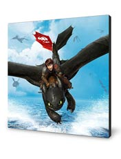شاسی How to Train Your Dragon 2 طرح سوم